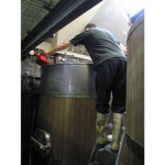 Will checking the mash