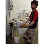Marco grinding the whole leaf hops